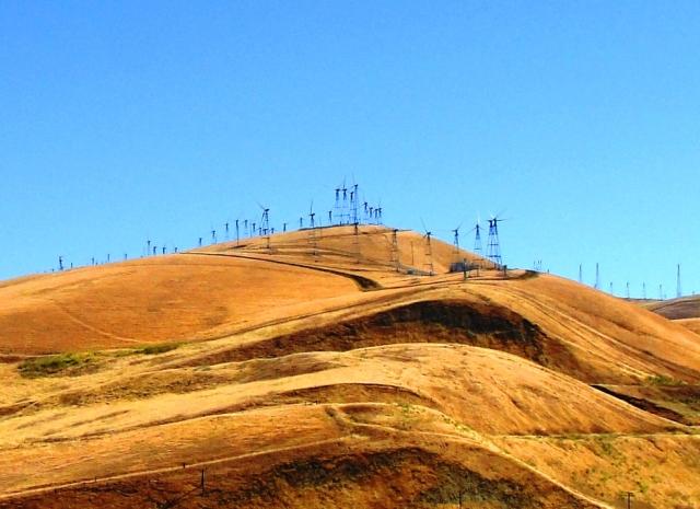 Golden Hills of the Altamont