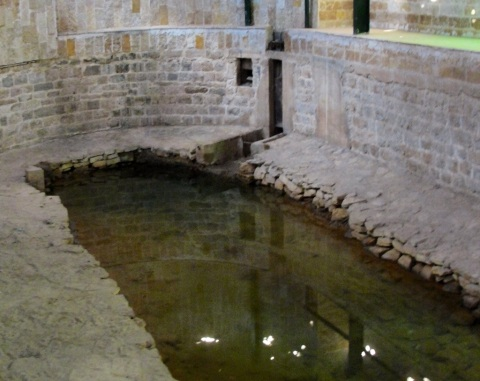 Elisha's Spring, Tell es-Sultan, Jericho, Healed Spring