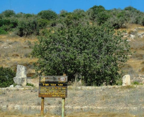 Roman Milestones in the Shephelah - Near Tell Goded or Marasheth Gath
