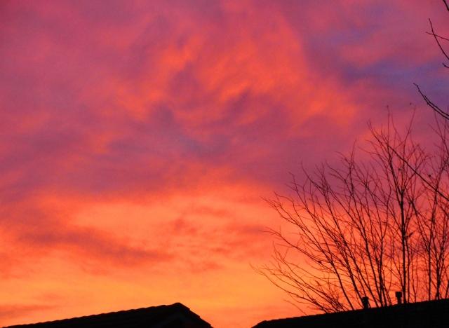 December Sunset - California - Silhouette - Colorful Sky