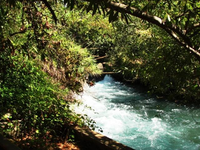 Dan Stream - Laish - Tel Dan - Source of Jordan River
