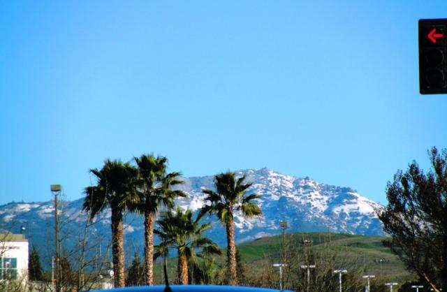 Mount Diablo Snow Cover - February 2013 - Winter Storm - Snow Storm - Dublin, California - Palm Trees and Snow