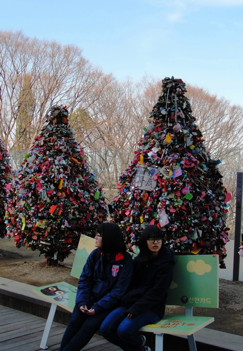 Love Padlock Trees - Namsan Tower - N Seoul Tower - Seoul South Korea - Tree of Love