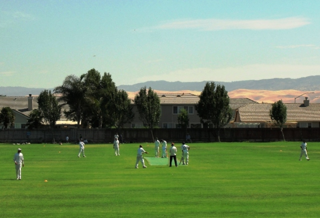 Cricket Pitch - Tracy, California - Cricket in the US - American Cricket