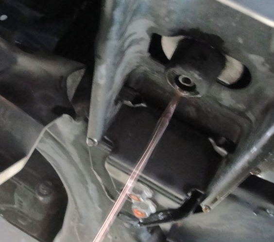 Leaking Radiator Fluid - Animal Damage - Pontiac G6 GXP