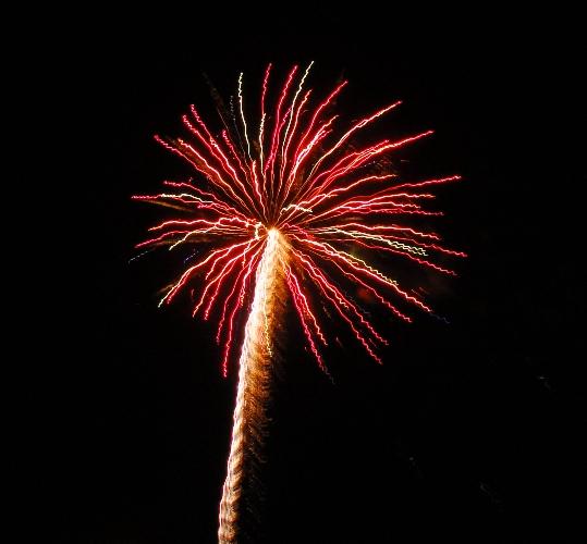 Fiesta Fireworks - Apricot Fiesta - Patterson California - Blogiversary