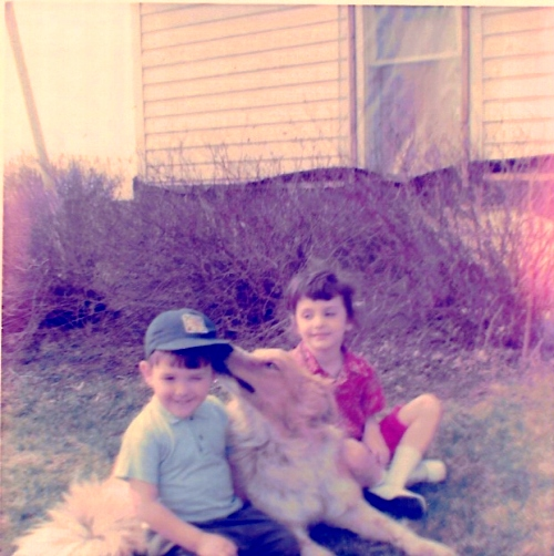 Collie, Lucky Charms, Family Pets, Family Dog, Memories