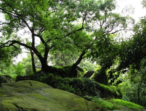 West Lake - Hangzhou - Island - Ancient Capital - Chinese ruins - Foliage