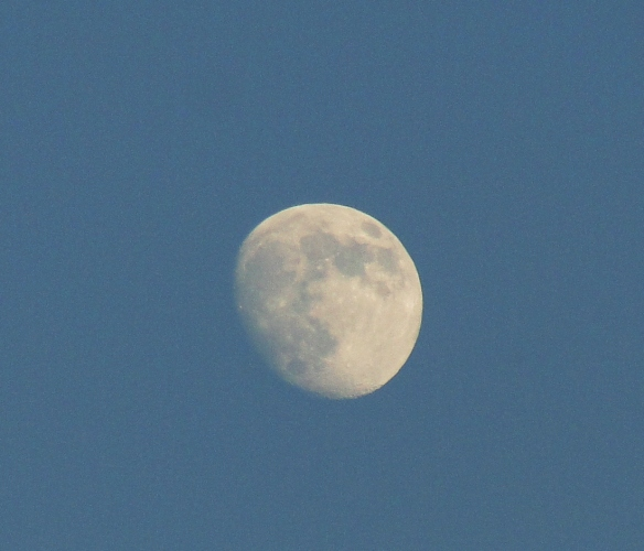 Moon - Almost Full Moon - Beautiful Evening - Craters on the moon
