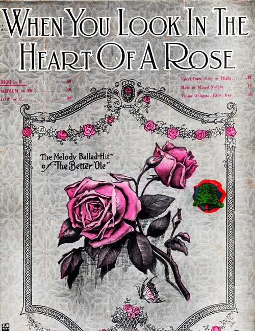 When You Look in the Heart of a Rose - Old Sheet Music 1919 - Marian Gillespie - Florence Methven - Roses