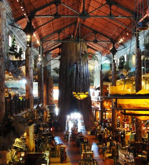 Bass Pro Shops Outdoor World - Manteca, California - Artificial Sequoia Tree - Outdoor Store