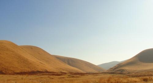 Patterson, California - Golden Hills - Diablo Grande - Fall Color