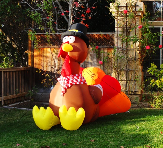 Thanksgiving Turkey - Blow Up Turkey - Thanksgiving Decorations - Feast Time