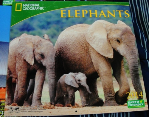 National Geographic Elephants Calendar - 2014 Calendar - Elephants - Calendar Day