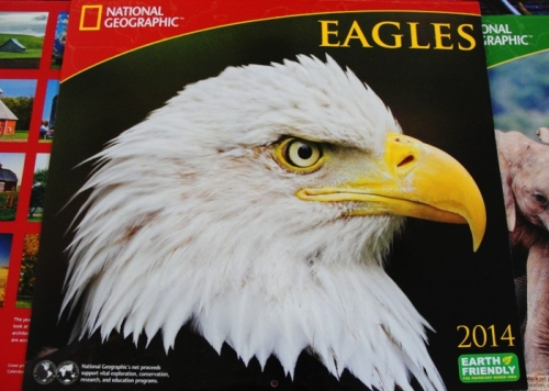 Calendar - Eagles - National Geographic - 2014 Calendar - Yearly Calendars