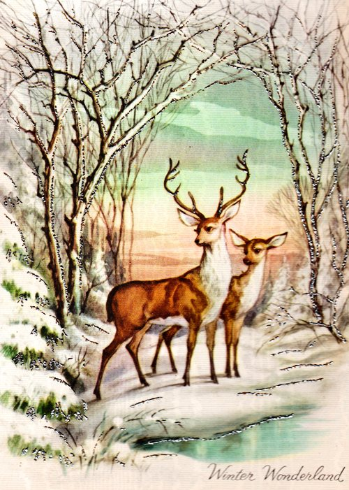 Winter Wonderland - Deer in snow - Winter Scene - Grandma's Scrapbooks - Old Seasonal Card - Big Buck