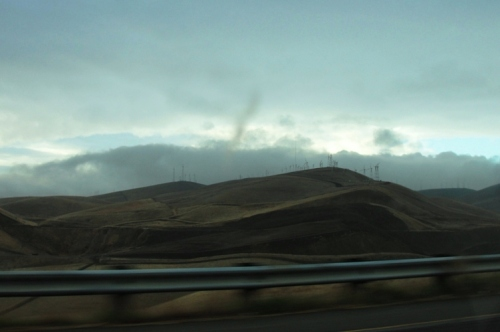 Altamont Hills - Altamont Pass - Winter View? - Golden Hills