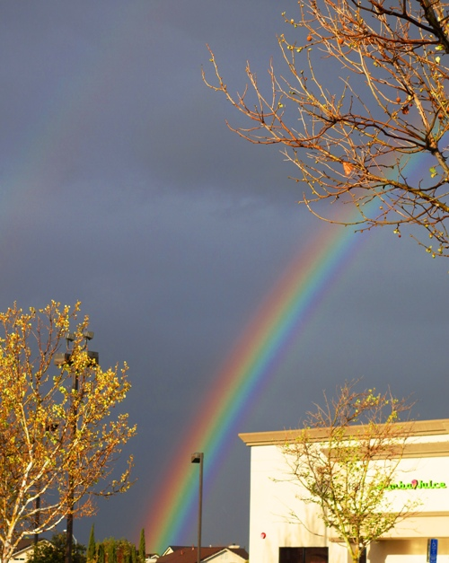 Rainbow - Raindrops - water droplets - Reflection and Refraction - Spring Showers