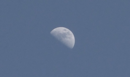 Half Moon - April - Daylight Moon Shot - Moon Detail