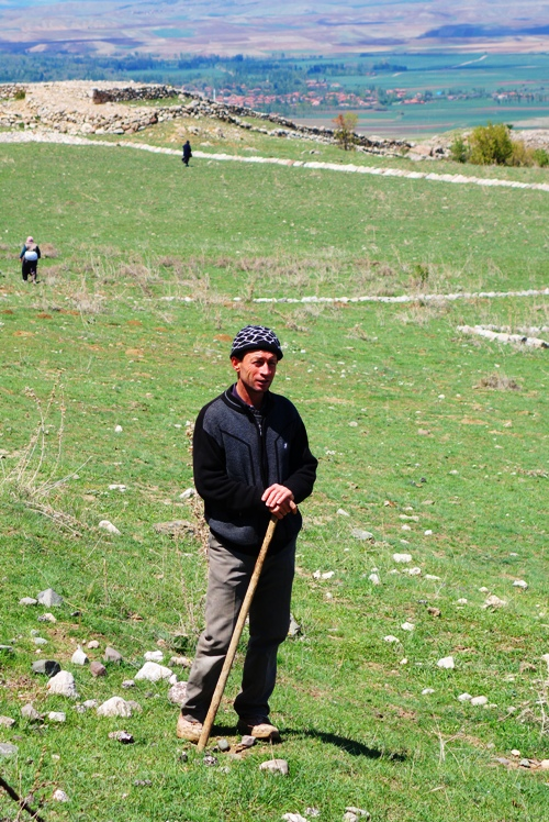 Shepherd with Rod, Rod and Staff, Psalms 23, Shepherding tools