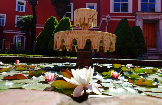 Water Lily - Fountain - Dolmabahce Palace - Domabahce Sarayi