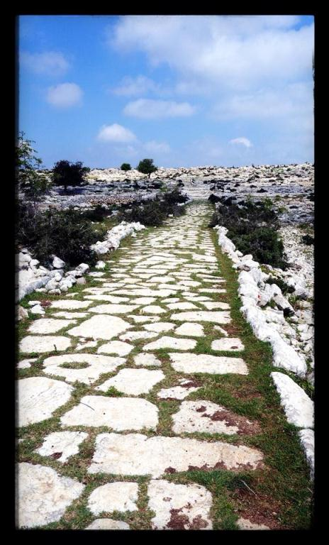 Roman Road - Tarsus Roman Road - Steps of Paul - Cilician Road