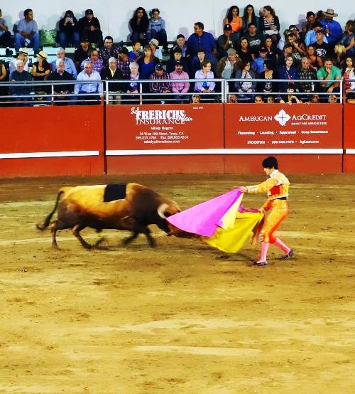 matador, cape work, bullfight, Portuguese bullfight, Tracy, California