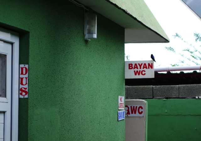 Bayan, Toilet, Turkish Toilet, Tuvalet, ucretsiz