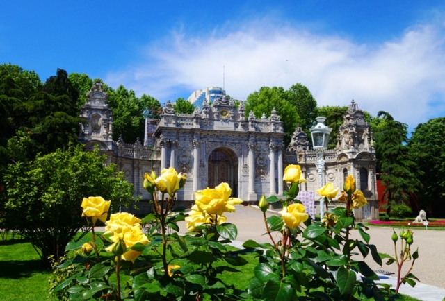 Dolmabahce Palace, Yellow Roses, Entry Gate, Istanbul, Roses, Turkey