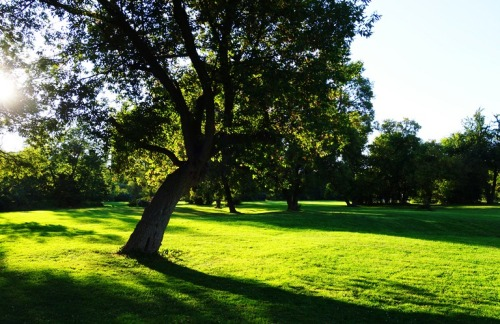 Rowntree Park, Toronto, Canada, Humber River Park, Walk in the Park