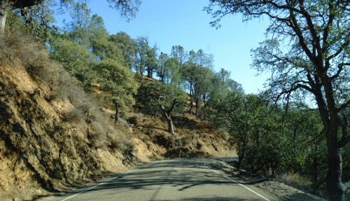 Livermore, Mines Road, California, Wilderness, Country Road, Curvy Roads