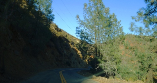 Del Puerto Canyon, Wilderness Area, Patterson, California, Free Range Cattle