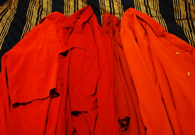 Red Shirts, Mark Hall-Patton Costume, Pawn Stars, Halloween
