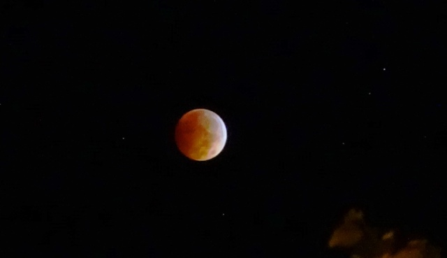 Blood Red Moon, Eclipse, tripod, Sony, Zeiss