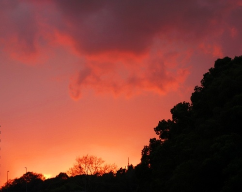 Tokyo Sunset, Tokyo, Japan, Sunset, Red Sky, Wednesday Wanderings