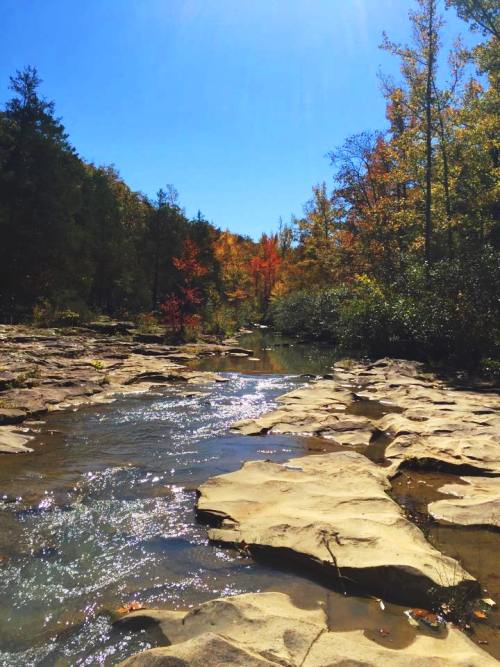 Richland Creek Wilderness Area, Arkansas, Scenic Spots