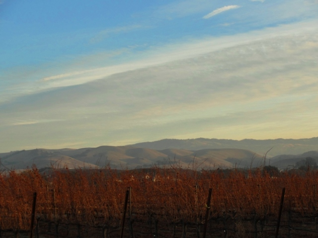 Livermore Hills, Livermore Vineyards, Campo di Bocce, Ruby Hill Vineyard