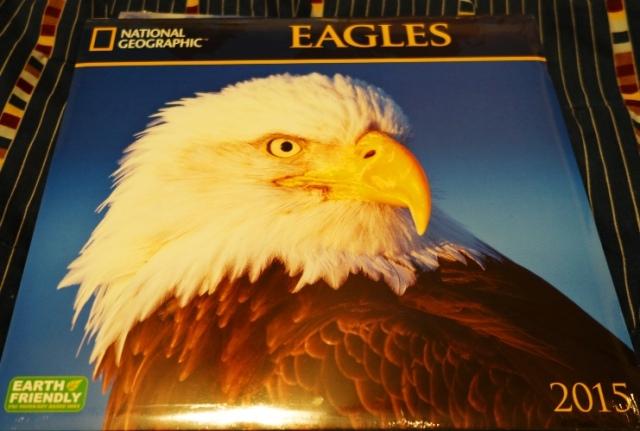 National Geographic Eagles Calendar, 2015 Calendar, Eagles
