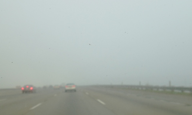 Cars in Fog, Foggy Commute, Dense Fog, Visibility in Fog