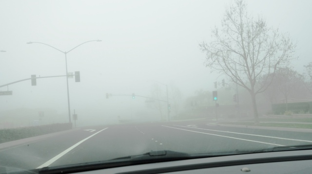 Fog, Street Lights, Traffic Signals, Foggy Day