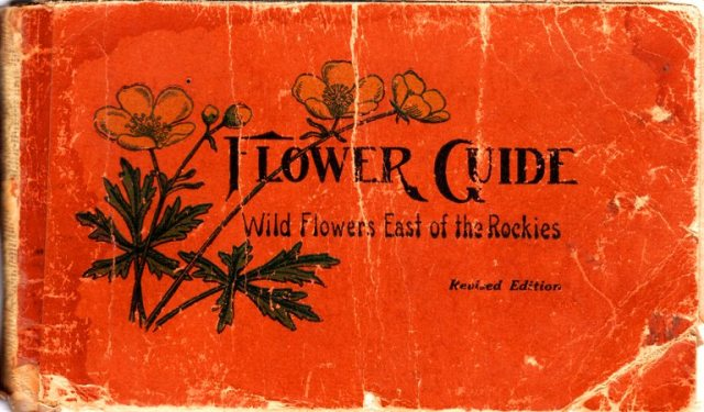 Flower Guide, Wild Flowers East of the Rockies,Chester A. Reed