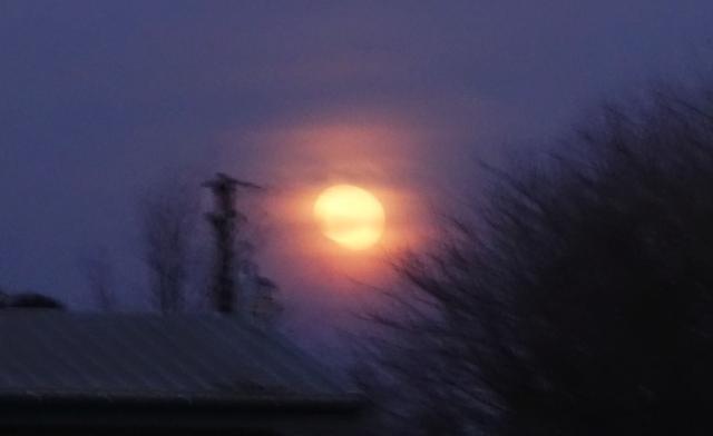 Full Moon, Silhouette, Sundown