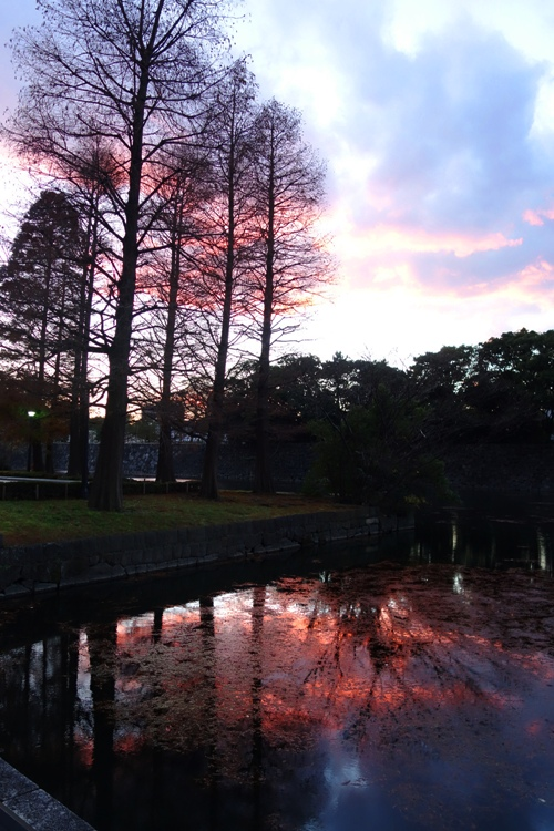 Sunset in Tokyo, Castle Moat, Edo Castle, Silhouettes