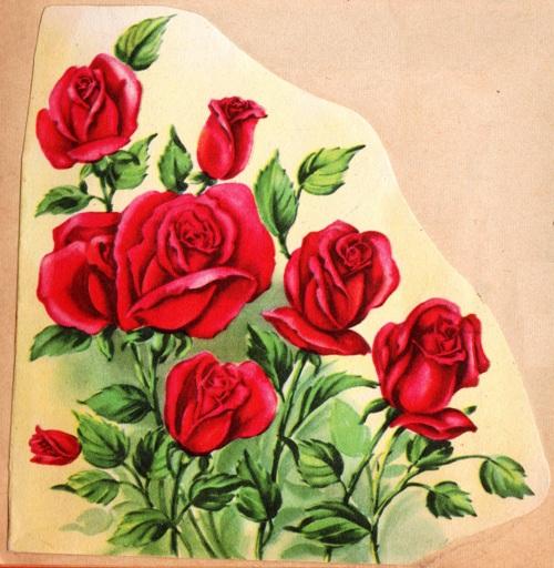 Red Roses, Valentine's Day, Rose Arrangement