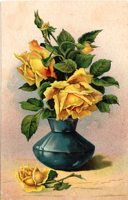 Yellow Roses, Post Card, Vintage Post Card, Roses