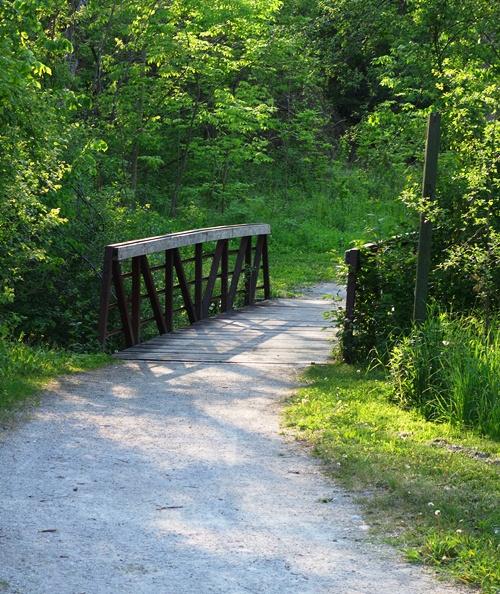 Bridge, Humber River, Rowentree Mill Park, Toronto