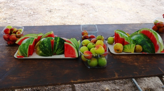 Watermelon Break, Tel Lachish, Archaeology, Apples, Fruit
