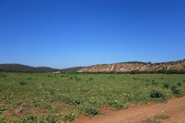 Valley of Elah, Goliath, David, Melon Patch, Khirbet Qeiyafa