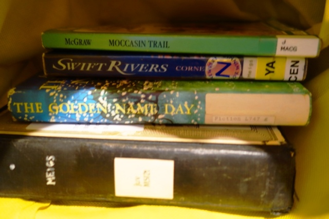 Library Books, Newbery Books, Travel chores, Travel Formula