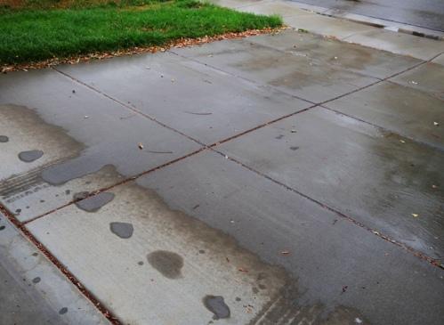 Rain, Drought, California, Wed Day, Raindrops